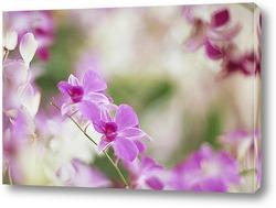 Flower028