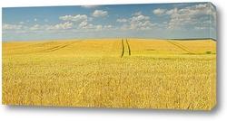 Постер Литовская поле пшеницы