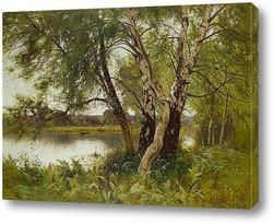 Спокойный пейзаж реки