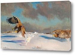 Две лисы в зимний пейзаж