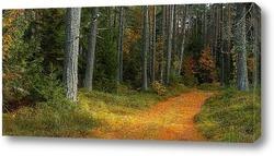 Постер Осенний лес