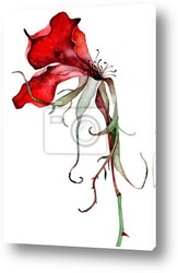 Background with a red flower