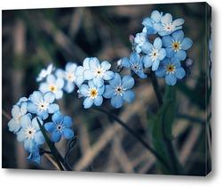 Постер Голубое трио