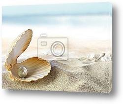 Постер Раковина с жемчужиной