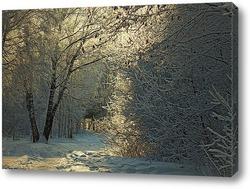 Зимний, лесной пейзаж