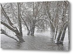 Постер Снежное настроение