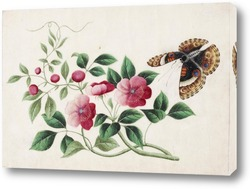 Бабочка и пионы