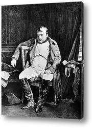 Наполеон (8)