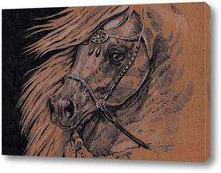 Постер Арабская лошадь