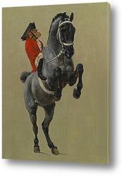 Постер Цирк Мольера