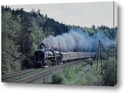 TRAIL557