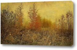 Постер Деревья осенью