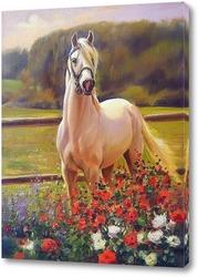 Постер Белый конь