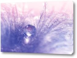 Постер Перо с каплями воды и нежными оттенками голубого и розового