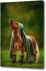 Постер Пони под дождем