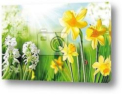Постер Cheerful Spring Bulbs