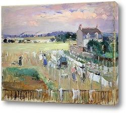 Вишня, 1891