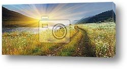 Постер Summer landscape