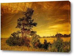 Постер Одно дерево в полях