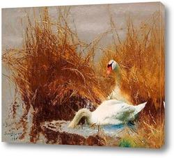 Картина Лебеди на воде