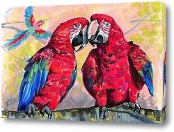 Постер Красные ара
