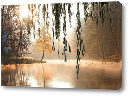 утро на озере