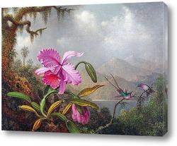 Картина Орхидеи и колибри