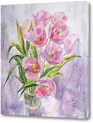 Красивые розовые цветы гортензии