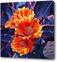 Картина Цветы опунции. Недотроги