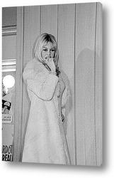 Постер Brigitte Bardot-15