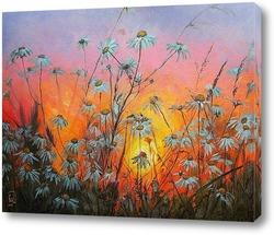 Картина Ромашки на закате