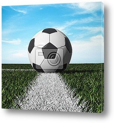 Постер Close up of soccer ball on the field