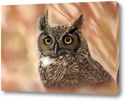 Portrait of owl with yellow eyes