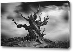 Постер Wise Old Tree