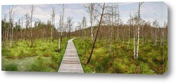 Постер Путь проходит через болото