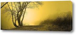 Постер туман 6