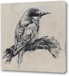 Постер Золотая щурка - птица