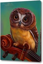 Картина Сова музыкант