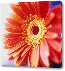 Flower051