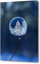 Замёрзший мыльный пузырь на высохшем цветке