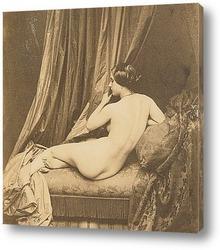 elegant woman looking at mirror