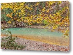 Постер Осень на реке Хоста. Окрестность Сочи