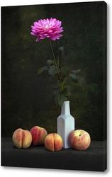 Постер Цветок георгины и персики