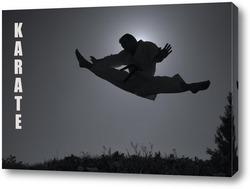 Постер Karate-01011010-2