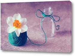 Постер Нарцисс в клубочке льняных ниток