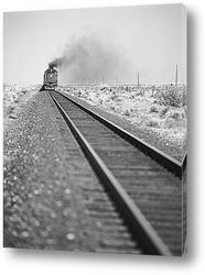 TRAIL551