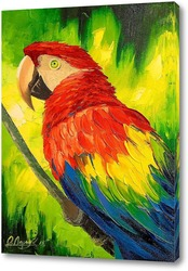 Cute Sun Conure Parrot Sitting on a Wooden Perch