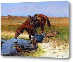 Ловля лошадей