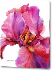 """""""Волшебный цветок. Ирис"""""""