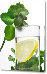 Постер стакан здоровья